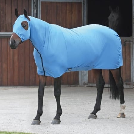 Shires Stretch Rug, Blue Pony