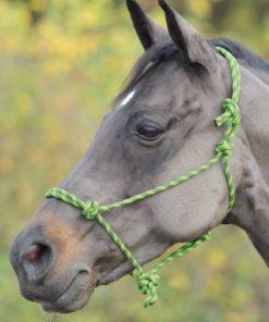 Shires Adjustable Rope Halter, Lime & Black - One Size