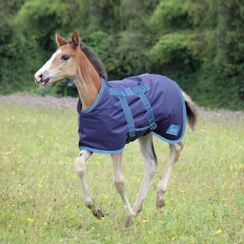 "Shires Foal Rug 3'6"""