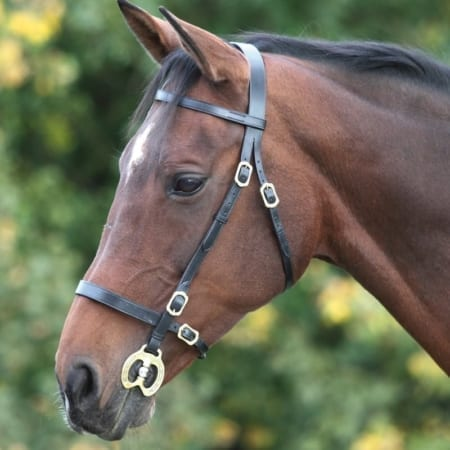 Shires Blenheim Plain In Hand Bridle, Black Cob