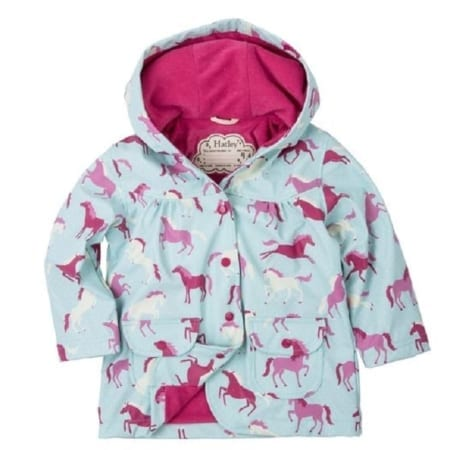 raincoat ponies & polka