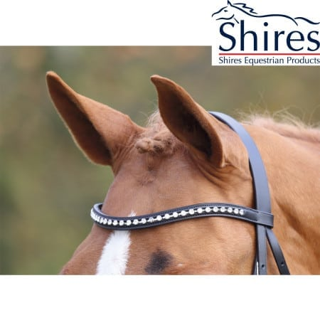 5028 AVIEMORE  large diamante browband