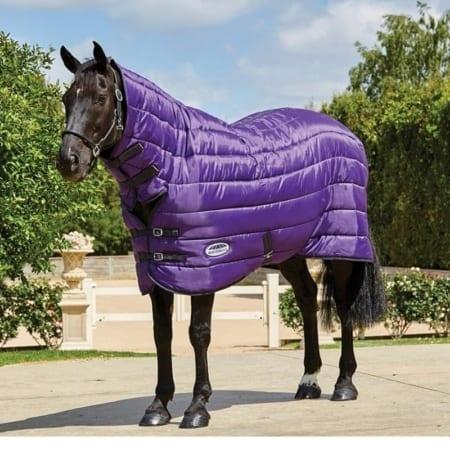 comfitec-combo-neck-heavy-purple