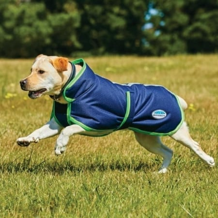 WeatherBeeta Parka 1200D Deluxe Dog Coat With Belly