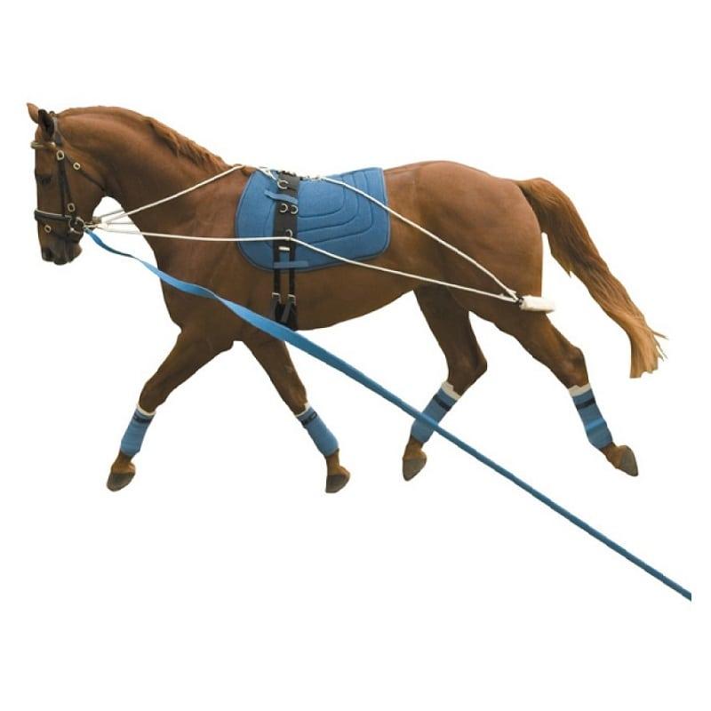 Kincade Lunging Training System Wadswick