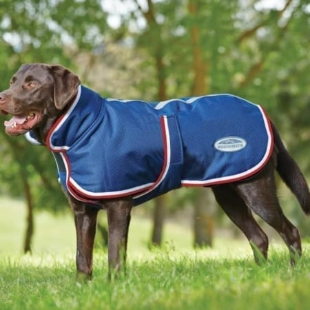 WeatherBeeta Parka 1200D Dog Coat With Belly