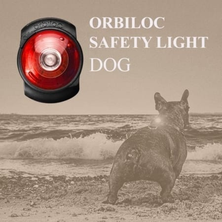 Orbiloc Dual Safety Light For Dogs