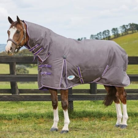 WeatherBeeta Comfitec Essential Combo Neck, Medium Turnout Rug