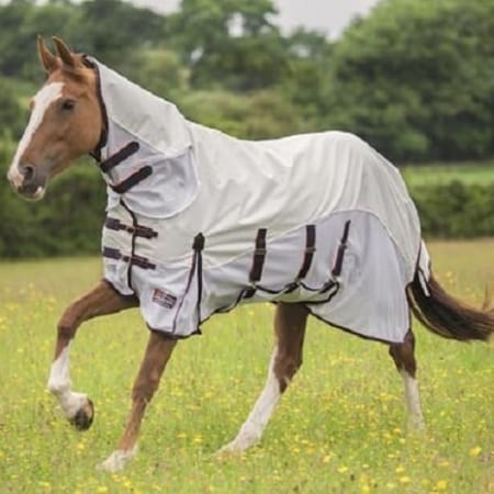 Shires Highlander Plus Maxi Flow Combo, White/Navy/Orange