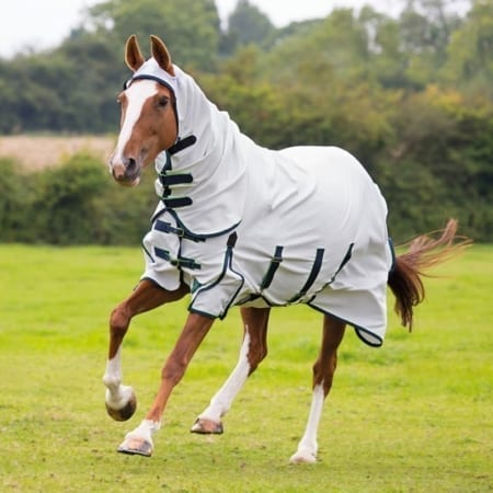 Shires Highlander Plus Sweet Itch Combo