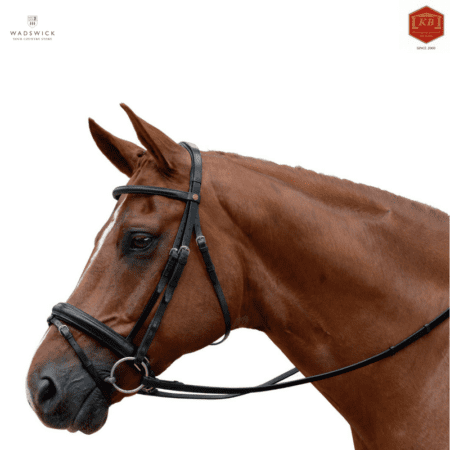 Albion KB Competition Crank Flash Noseband Bridle
