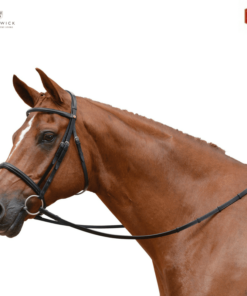 Albion KB Competition Cavesson Noseband Bridle