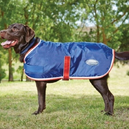 WeatherBeeta Windbreaker 420D Dog Coat II