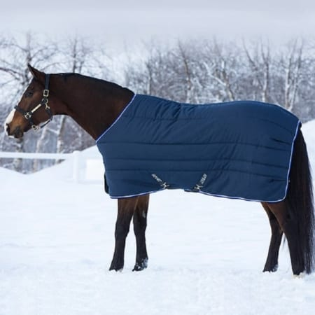 Amigo Vari-Layer Plus Medium Stable Rug