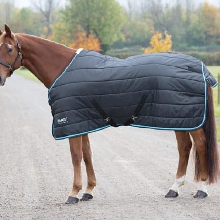 Shires Tempest 200g Black/Turquoise Stable Rug