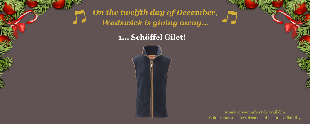 12 Days of Christmas - Day 12 Giveaway - 1 Schoffel Gile