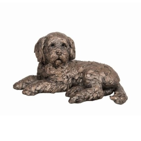 Frith Bronze Ozzy Cockapoo Lying