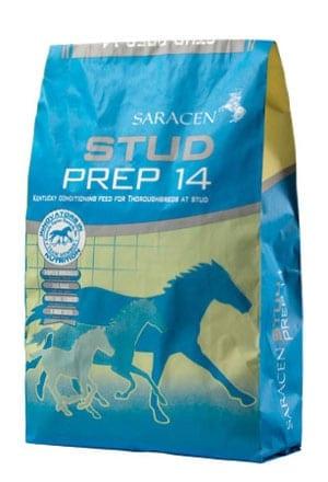 Saracen Horse Feed - Saracen Stud Prep - Wadswick Country Store Horse Feed