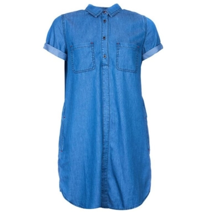 Barbour Fins Dress, Chambray