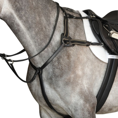 Collegiate 5 Points Breastplate IV