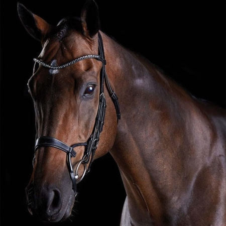 Collegiate Comfitec Crystal Bridle,