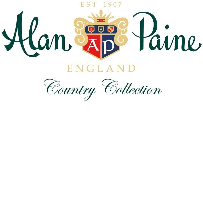 Alan Paine logo image
