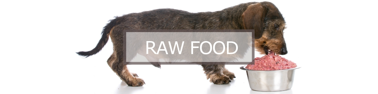 Raw Dog Food Page Banner
