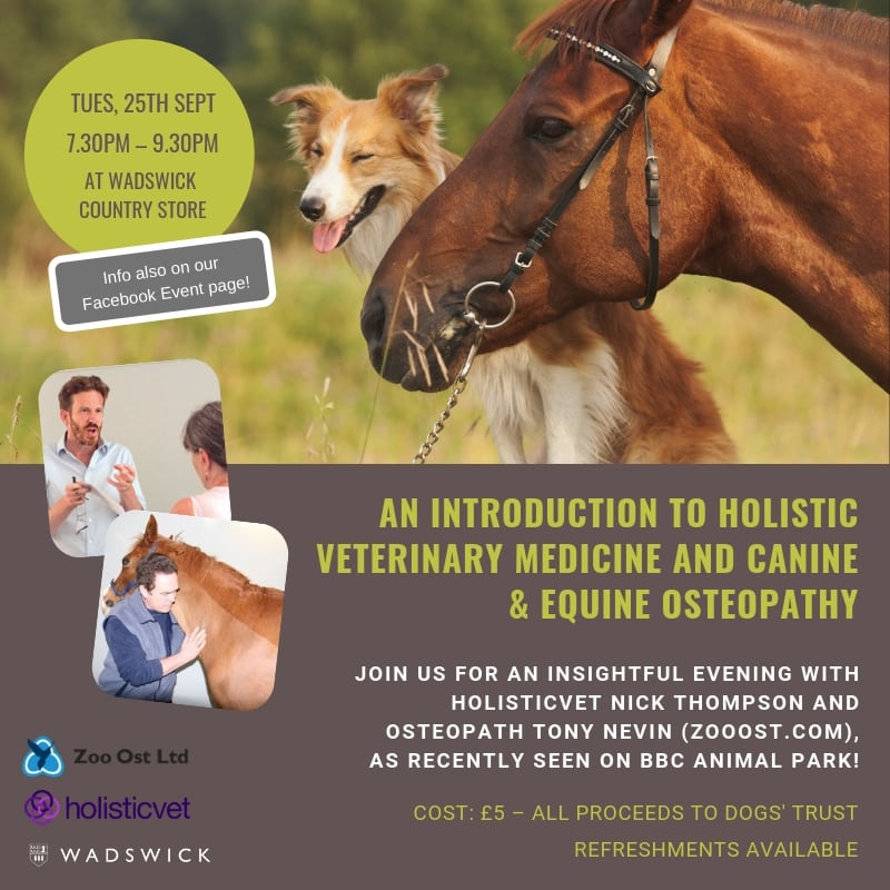 Events Intro to Holistic Veterinary Medicine