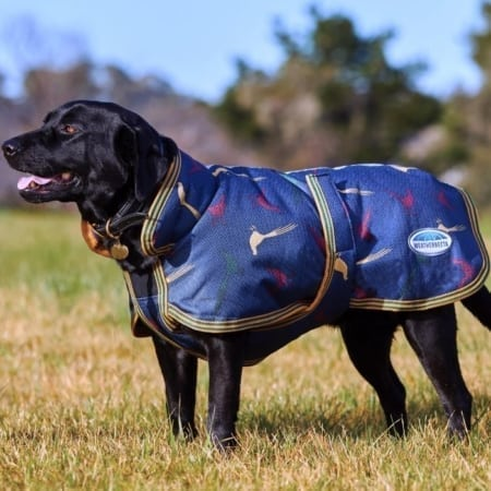 WeatherBeeta Parka Dog Coat with Pheasant Print