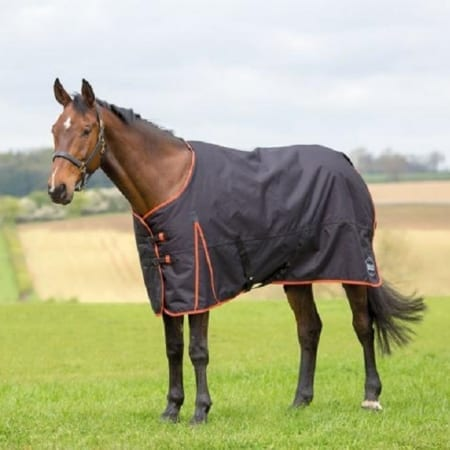 Bridleway Ontario Medium Turnout Rug, Black/Orange
