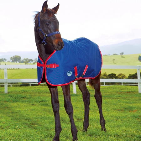 WeatherBeeta 1200D Foal Standar Neck Medium