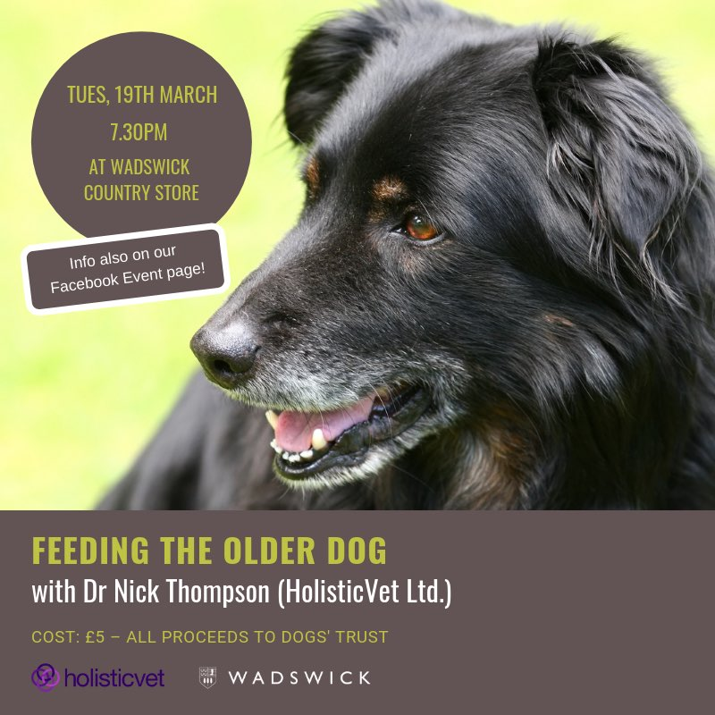 Feeding the Older Dog - Holisticvet talk at Wadswick Country Store - 19th March 2019