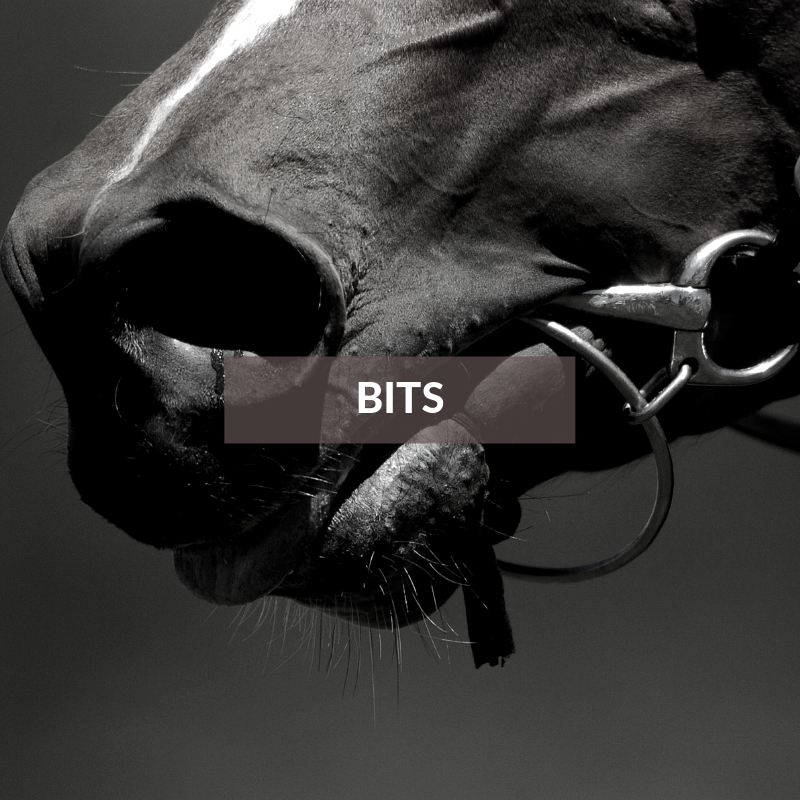 Horse section - Bits