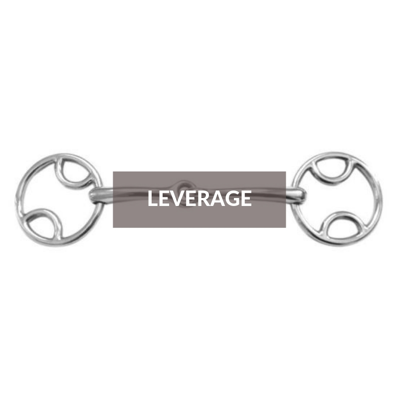 Bits Section - Leverage