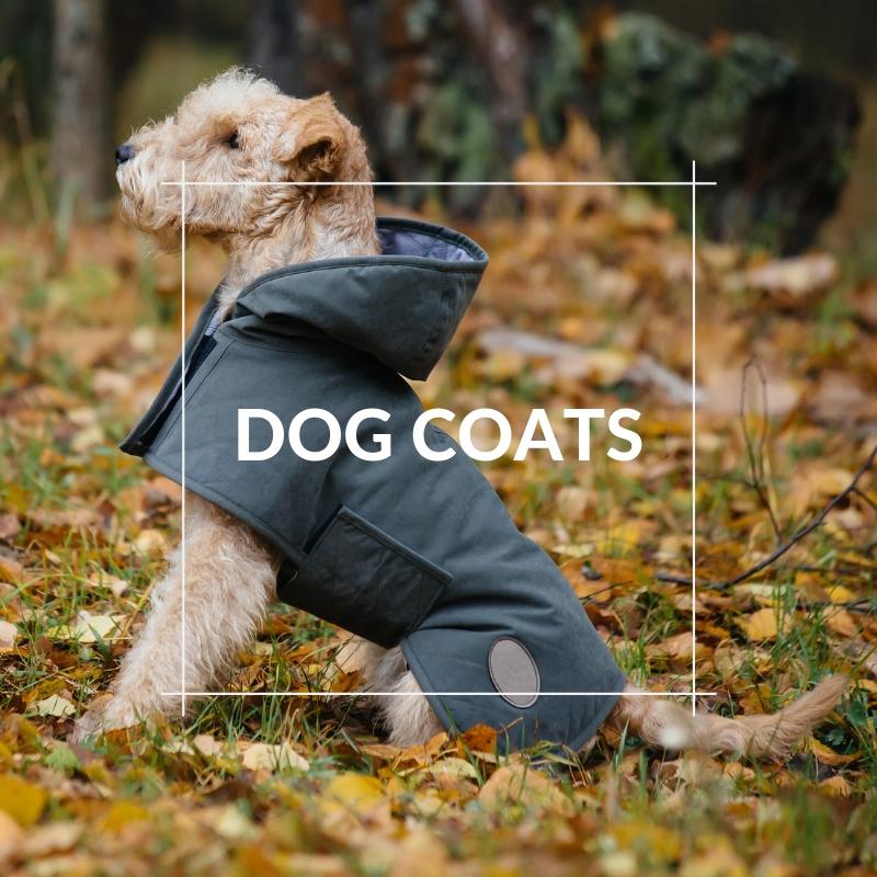 Dog Section - Coats