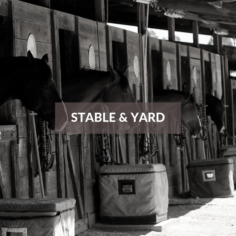 Horse Section - Stable & Yard