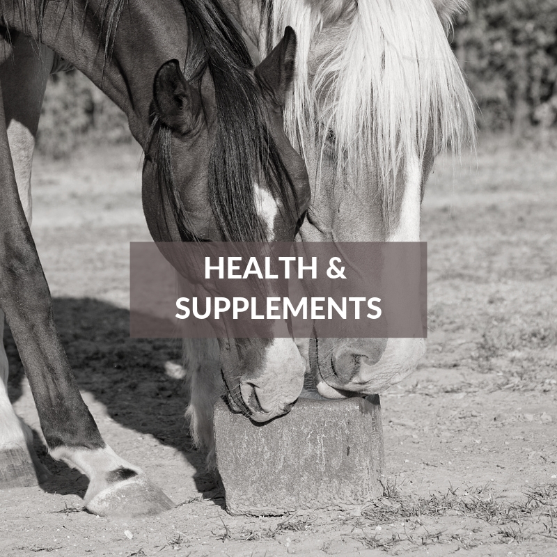 Horse Section - Health & Supplements