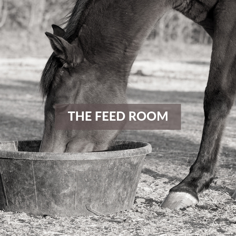 The Horse Section - The Feed Room