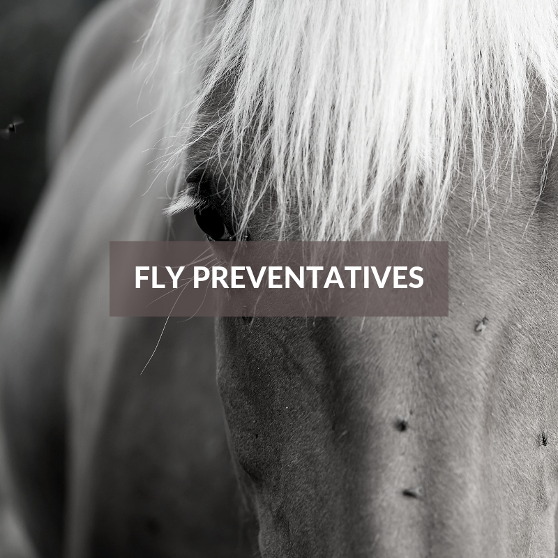 Horse Care & Grooming Area Fly Preventatives