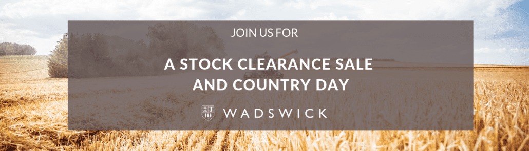 Stock Clearance Sale & Country Day Banner