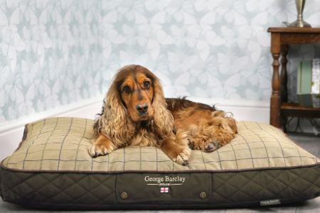George Barclay Luxury Dog Beds