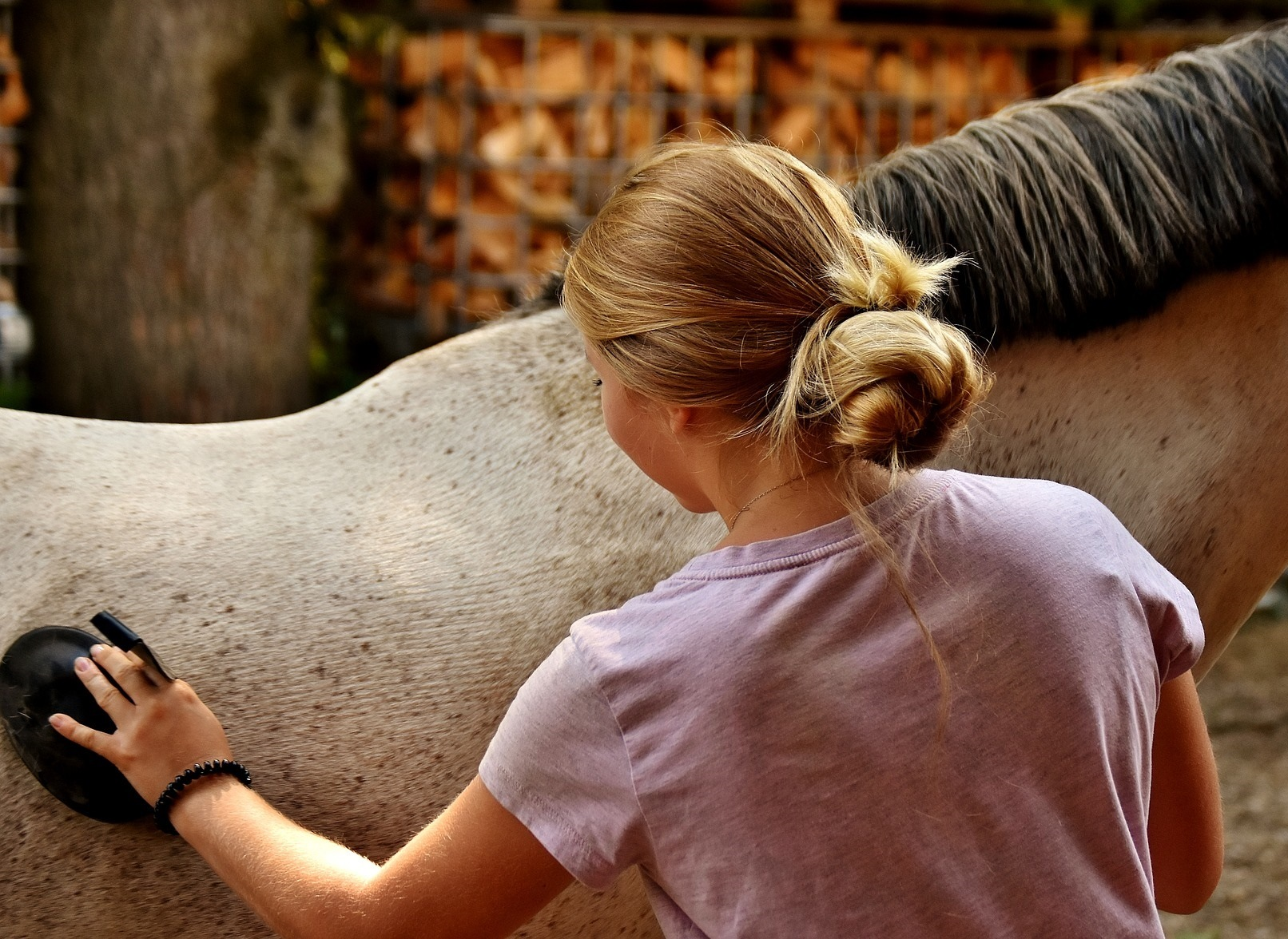 Horse Health & Grooming