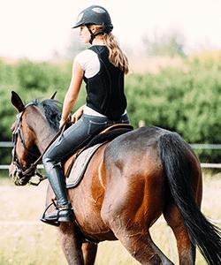 Equine Wadswick